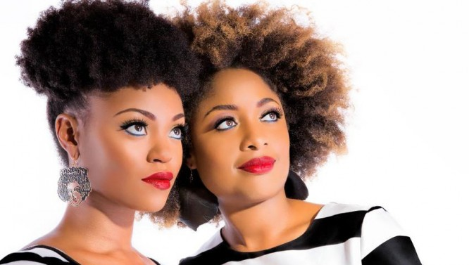 Cabellos Afro