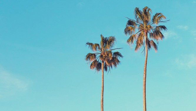 Malibu C | thehairstore.es Tu Tienda de Peluquería Online